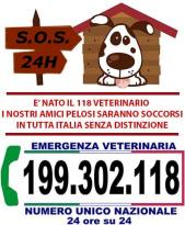 S.O.S veterinaria 24/24 h