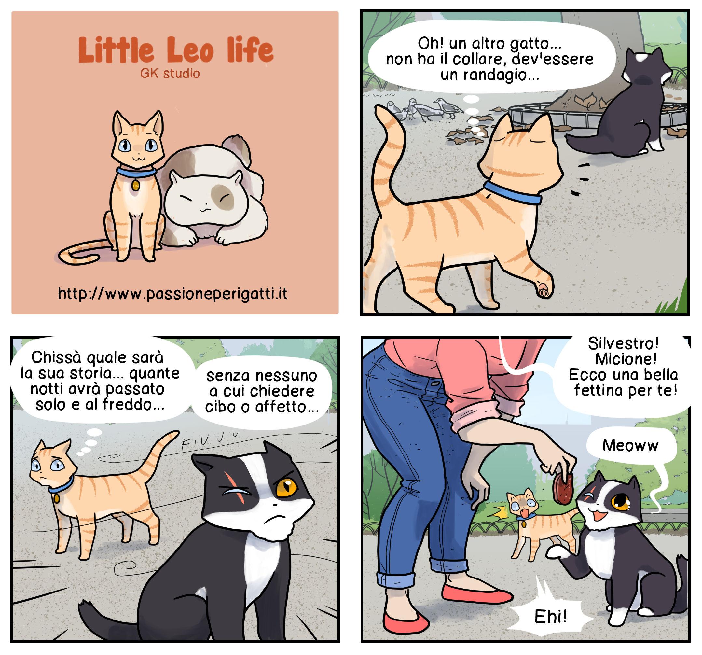 gatti 13 new