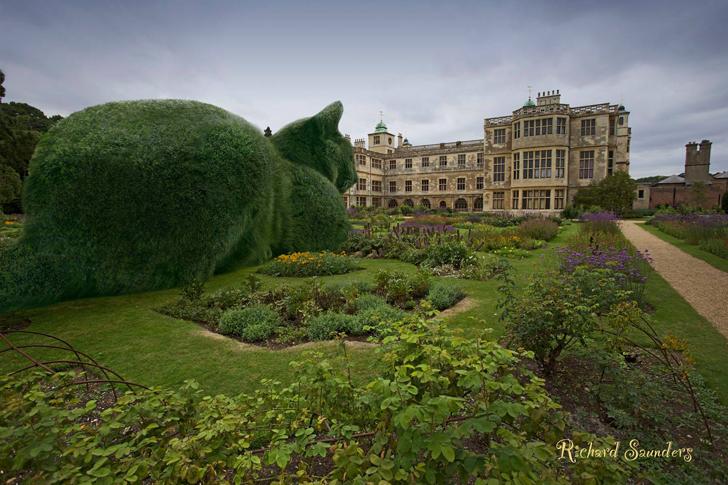 topiary-cat5