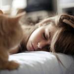 Sognare un gatto (interpretazione dei Sogni)