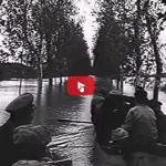 Un frammento di video per far riflettere chi maltratta e abbandona gli animali.