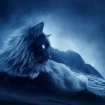 Sognare un gatto: Significato