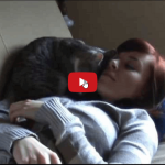 Il segreto di un buon rapporto con un gatto è dare a lui l'iniziativa del primo approccio