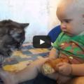 Gatto e bambino fanno merenda insieme