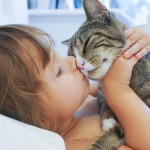 Chi non conosce i gatti si stupirà nel sapere come un gatto può migliorare la nostra vita