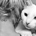 Il tuo gatto ti rispetta e ti ama se