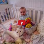 Bambini e gatto un'esperienza di crescita molto speciale.