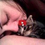Mi sono innamorata del mio gattino