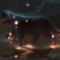 L'Energia Magica dei Gatti