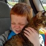 Un gatto e suo fratello una bellissima storia