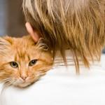 Tra un gatto e il suo umano si instaurerà un tipo di comunicazione che solo loro saranno capaci di decifrare