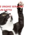L'amputazione delle unghie ai gatti sta per essere messa fuorilegge a New York