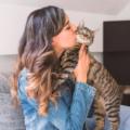 I gatti amano i baci? Facciamo chiarezza