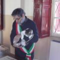Nel paese del «gatto sindaco»: la micia Marina celebra i matrimoni
