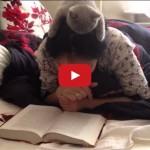 Compagno di lettura