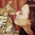 Scopri quanta affinità c'è tra te e il tuo gatto [TEST]